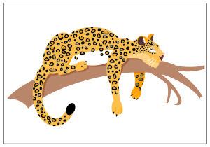 leopard copy-01